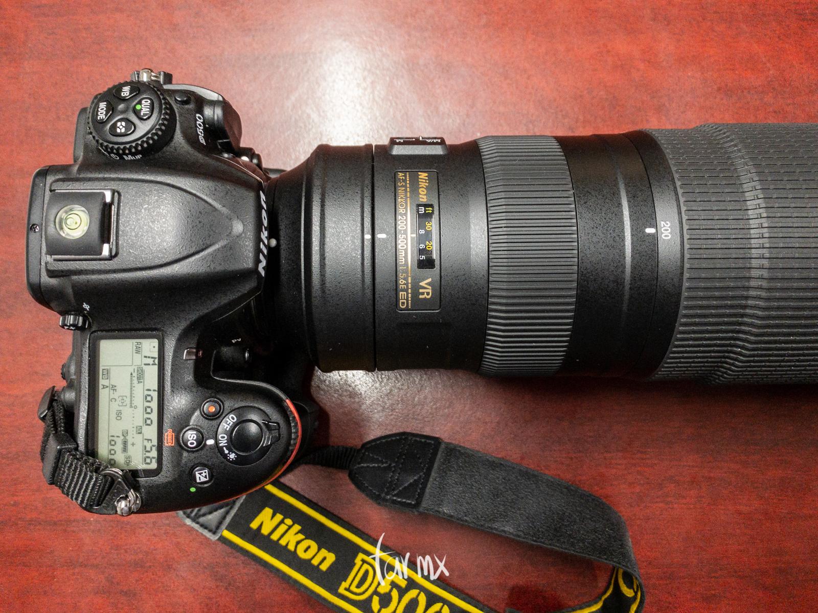Nikon D500 + Nikkor 200-500mm f/5.6E ED VR